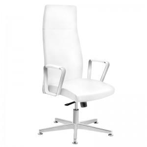 Kliento kėdė RICO 156, Balta