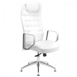 Kliento kėdė RICO 199, Balta