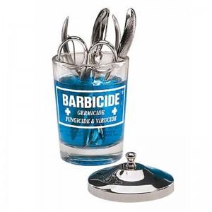 BARBICIDAS Stiklo indas dezinfekcijai, 120ml