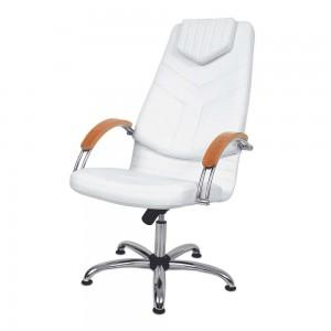 Kliento kėdė DINO I
